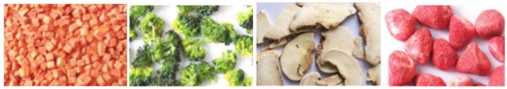 Food Fruit Process Freeze Dryer, Industrial Production
